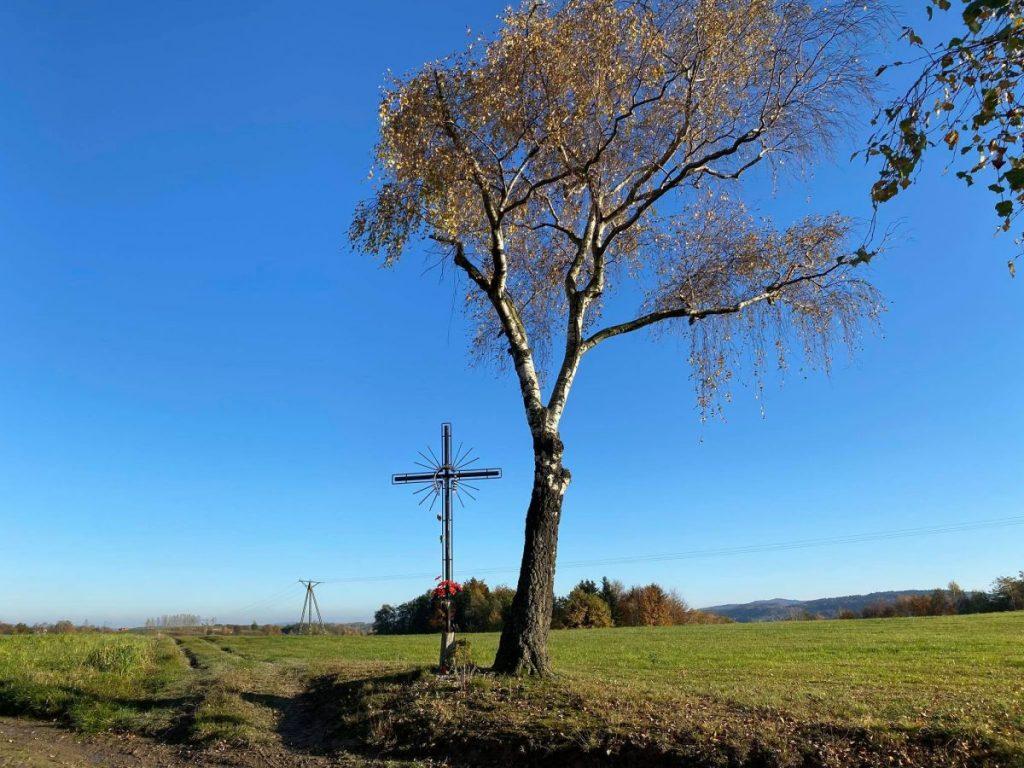Krzyż i grób poległych w miejscu potyczki Konfederatów Barskich oddziału Pułaskiego Jodłowa powiat dębicki podkarpackie